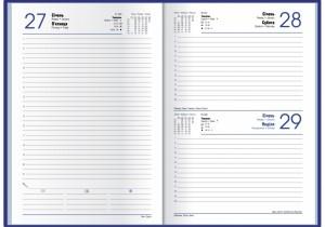 Ежедневник Economix Satin А5, датированный 2021